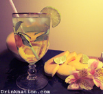 Cantaloupe Dizzy drink recipe